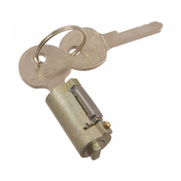 Trunk or Tailgate Lock Cylinder & Keys