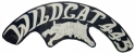 Wildcat 445 Air Cleaner Decal Set