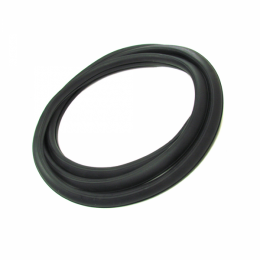 Windshield Seal